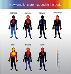 Heat map of the human body depending on the vector