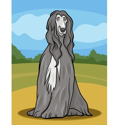 afghan hound dog cartoon vector image