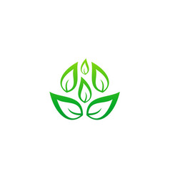 green leaf organic business logo vector image