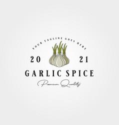 vintage garlic label logo design garlic spice vector image