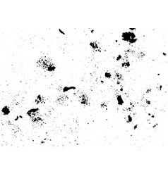 dirty grunge texture vector image vector image