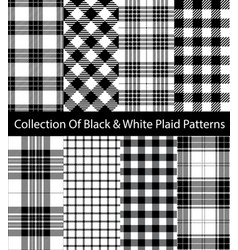 Black and white plaid collection vector