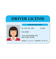 car river licence vector image
