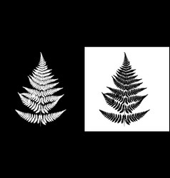 fern black-and-white image black fern silhouette vector image