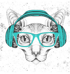 hipster animal sphynx cat with headphones vector image