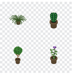 Isometric flower set of peyote plant tree and vector