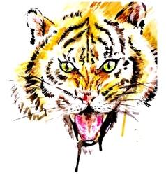 Watercolor tiger vector image