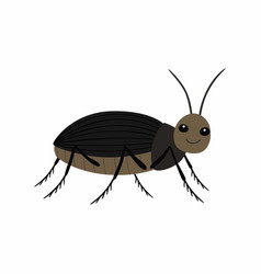 black beetle on a white background vector image
