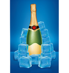champagne bottle in ice cubes vector image
