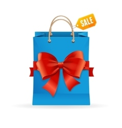 Paper Bag and Ribbon Present Concept vector image
