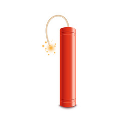 red dynamite stick with lit fuse ready to explode vector image
