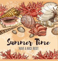 summer time seashells sea holiday and vacations vector image