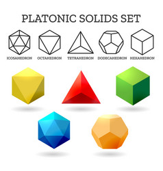 platonic 3d shapes vector image vector image