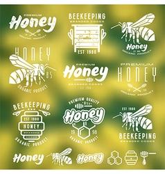Set of honey labels badges and design elements vector image vector image