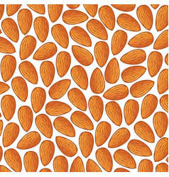 Background pattern with almonds vector