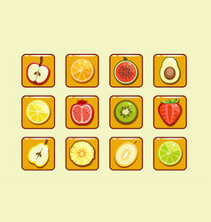 different fruit and berries block element vector image