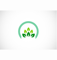 green leaf organic icon logo vector image
