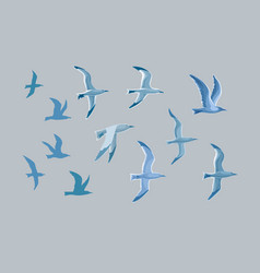 sea gulls set vector image