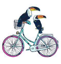 bike toucan super summer vector image vector image