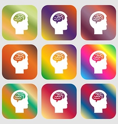 Brain sign icon Nine buttons with bright vector image vector image