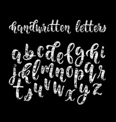 chalk hand drawn latin modern calligraphy brush vector image vector image