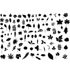 100 leaves vector image vector image