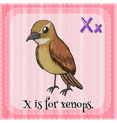 A letter X vector