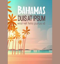 Bahamans sea shore beach on sunset beautiful vector