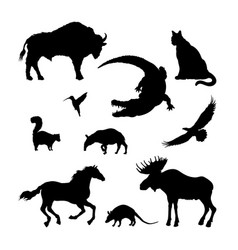 black silhouettes north american animal vector image