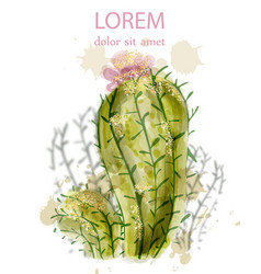 cactus isolated watercolor summer exotic flower vector image