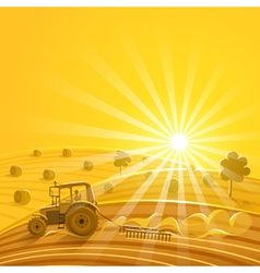 Harvesting on the sunny background vector image
