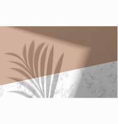 Mock up with shadow palm leaf on marble background vector