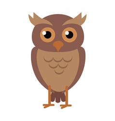 owl in flat design vector image