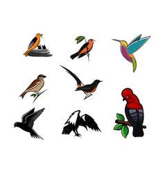 set bird logo vector image