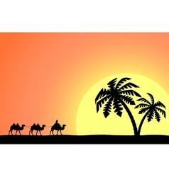 Man on the camel in palm trees at sunset vector image vector image