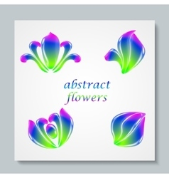 Luxury image logo Rainbow Abstract Flowers Set vector image vector image