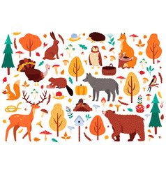 autumn cute animals wild hand drawn bear raccoon vector image