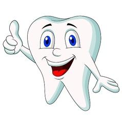 Cute tooth cartoon thumb up vector