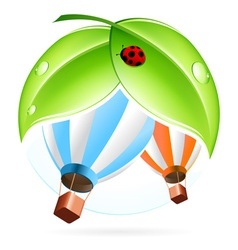 Green icon with leaves and Hot Air Balloon vector