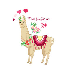 Llamas with flowers hand drawn animals sketches vector