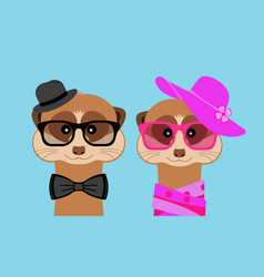 Meerkat boy and girl portrait with glasses hat vector