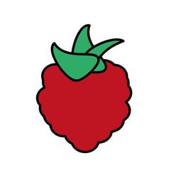 Raspberry fruit healthy harvest image vector