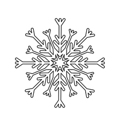 snowflake winter snow vector image