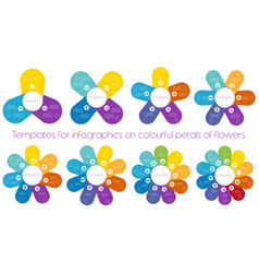 templates for infographics on colourful petals of vector image