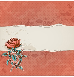 torn paper and rose vector image