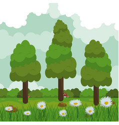 Colorful background of field with daisy flowers vector