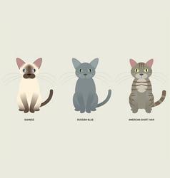 3 cats vector