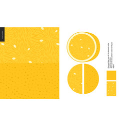 Food patterns fruit lemon vector