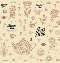 hand-drawn seamless pattern on a tea theme vector image