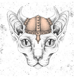 Hipster animal sphynx cat wearing a viking helmet vector